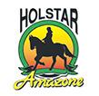 Holstar